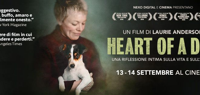 heart of a dog testata